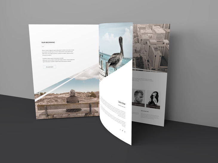 Three Page Brochure Mockup preview